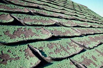 5 Signs That Your Roof Needs Work
